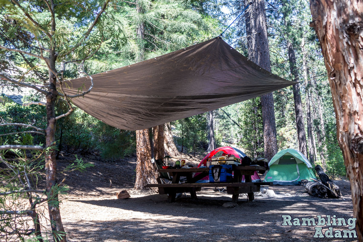 Tarp and Bungee Shelter